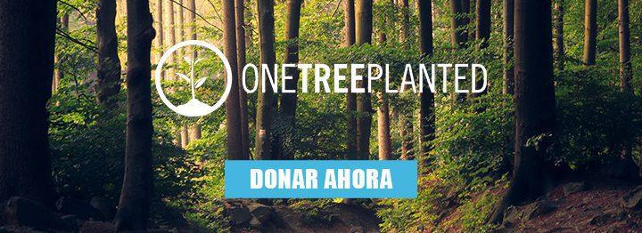 Damien Soitout contra la deforestación